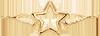 stříbrná hvězda s křídly 2 cm