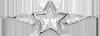 pozlacená hvězda s křídly 2 cm