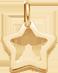 lemovaná hvězda 1 cm ze žlutého zlata