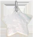 hvězdička z perletě 2 cm SR
